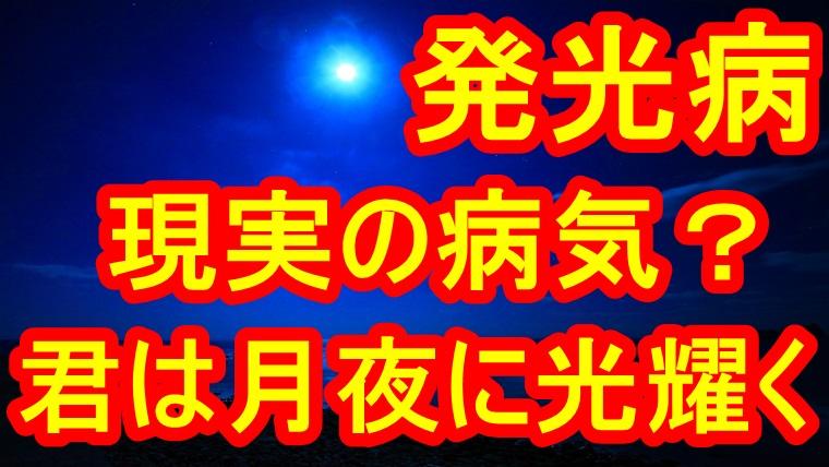 ネタバレ 君 は 月夜 に 光り輝く